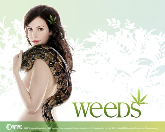 weeds showtime poster 1