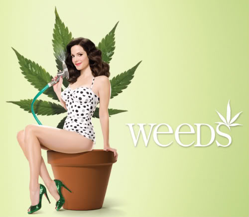 weeds showtime poster 2